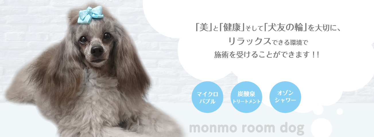 monmo・room dog